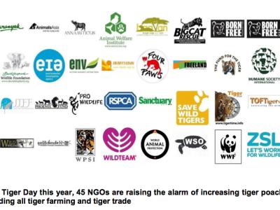 Photo of NGO logos