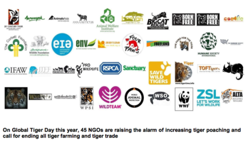 Photo of NGO logos