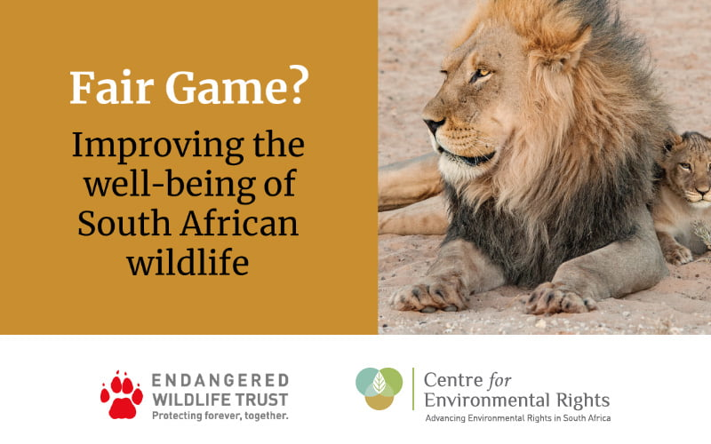 Fair Game? Improving the well-being of South African wildlife report