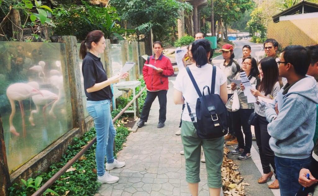 Wild welfare employee training zoo staff outside a zoo enclosure