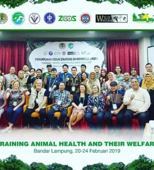 Group of 30 zoo vets pose for a photo after animal welfare training session